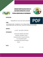 PACHERRES HIDROCEFALIA (1)