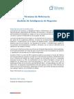 2013-12-05-Terminos de Referencia Inteligencia Negocios