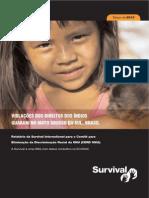 Survival Guarani Report Portuguese-2