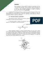Structura proteinelor