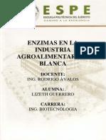 Enzimas en La Industria Agroalimentaria y Blanca