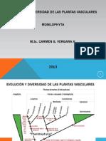 1Evolución y diversidad de las plantas vasculares