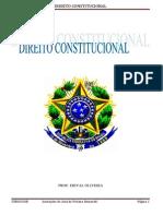 95853807-Constitucional
