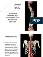 LACOLUMNAVERTEBRAL.ppt