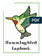 Hummingbirds Complete