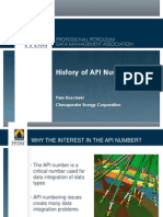 History of API Numbers