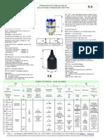 06-K4-2010.pdf