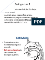 Faringe Curs 1