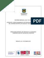Informe Sdqs Julio Dc 2012