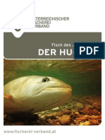 Folder Huchen WEB