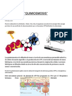 Quimiosmosis (BIOQUIMICA)