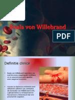 Boala Von Willebrand II