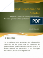 Ppt 3 Fenotipo y Genotipo