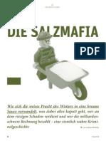 DIE SALZMAFIA - Zeitpunkt_131228