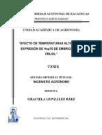 Tesis Agronomía 27 SEPTIEMBRE
