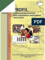Profil P2PL 2012