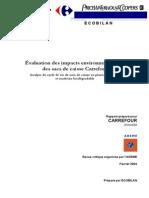 Rapport Carrefour Post Revue Critique v4