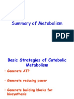 Summary of Metabolism Lecture