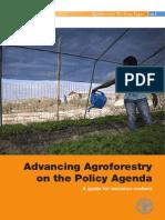 FAO Agrofloresta