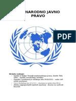 Mednarodno Javno Pravo_2013