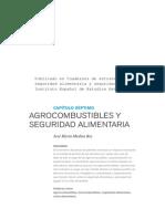 Agrocombustibles y Seguridad Alimentaria