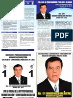 ELECCIONES EN EL COLEGIO DE CONTADORES PÚBLICOS DE LIMA  MARCA EL 1