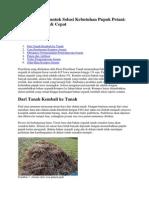 Kompos Jerami Untuk Solusi Kebutuhan Pupuk Petani