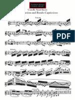 08. Violin.pdf