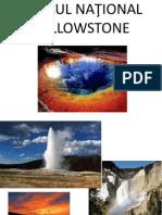 Parcul National Yellowstone