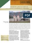 4018-mitos-e-percepcoes-sobre-as-empresas-chinesas.pdf