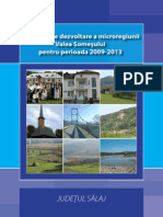 Strategia Microregiunii Valea Somesului_2009_2013