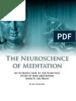 Neuroscience of Meditation - Chapter 2