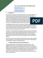 LOS ÁRBOLES Y ÁREAS VERDES EN NUESTRA CIUDAD UNIVERSITARIA