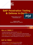SAP  Penetration Test Framework