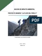 DIA Proyecto Minero La Flor Peru V