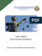 Sociologie Juridica an 2 Sem 2