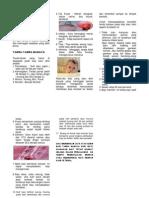 Leaflet Tanda Bahaya Pd Bayi