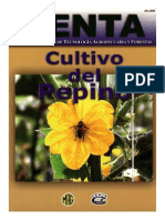 Cultivo Del Pepino