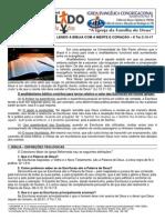 LIÇÃO 06 - DISCIPULADO – LENDO A BÍBLIA COM A MENTE E CORAÇÃO – II Tm 3.14-17
