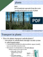 Biology Transportation