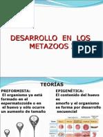 Desarrollo en Metazoarios