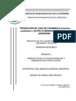 PROTOCOLO Carambola Final