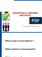 Perception Consumer Behaviour