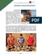 Dietas y Rutinas de Entrenamiento, Musculacion Deportiva PDF