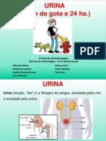 URINA (1)