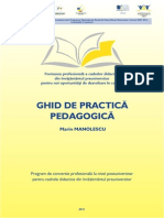 Ghid Practica Pedagogica