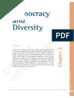 3. Democracy and Diversity