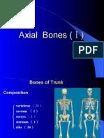 Bones of Truck