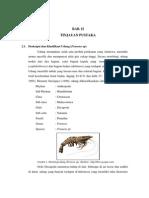LAPORAN PENGALENGAN BAB II. TINJAUAN PUSTAKA.pdf
