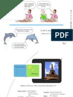 Dolphins - Rêves de France.pdf